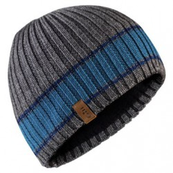 Band Stripe Beanie One Size Grey